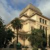 בית כנסת ברומא